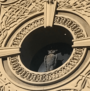 Detail of owl from the Owl's Club facade